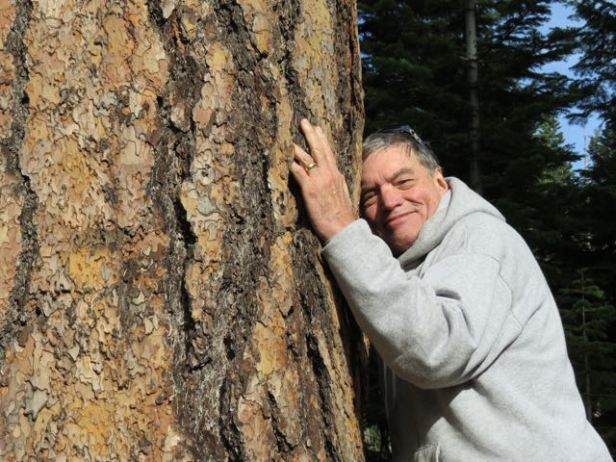 My dear friend Brock Evans communes with an ancient ponderosa pine recently in Hells Canyon.