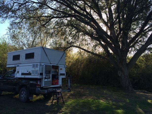 Return to my camper/writing studio--inspired below the coastal oak, by Olema Creek where a kingfisher flies.