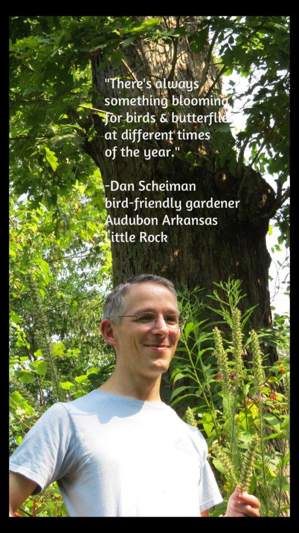 Dan with oak tree -quote