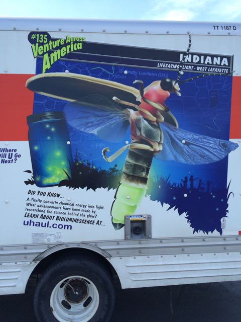 U-haul bioluminescence
