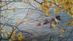 KingfisherBatemanprint