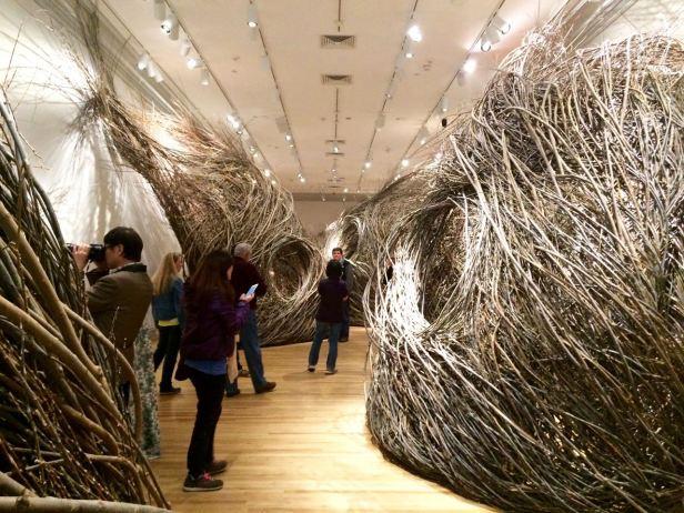 wonder-johndougherty-nests