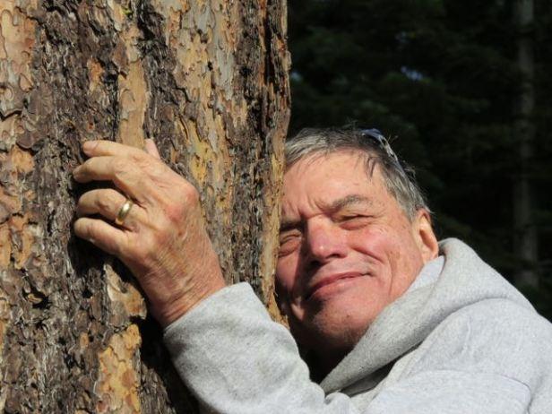 Brock treehugger