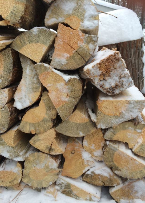 woodpile close up