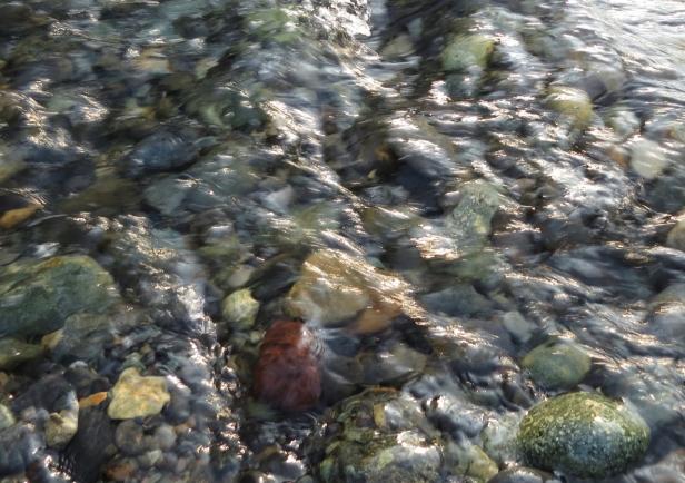 Imnaha closeup of water