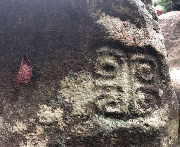 petroglyph with leaf