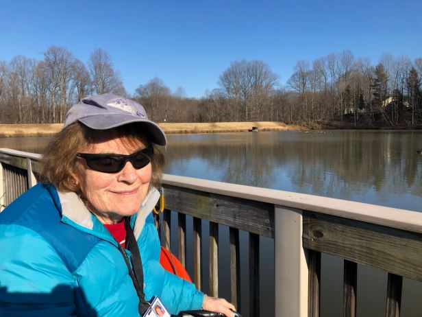 mom watches geese
