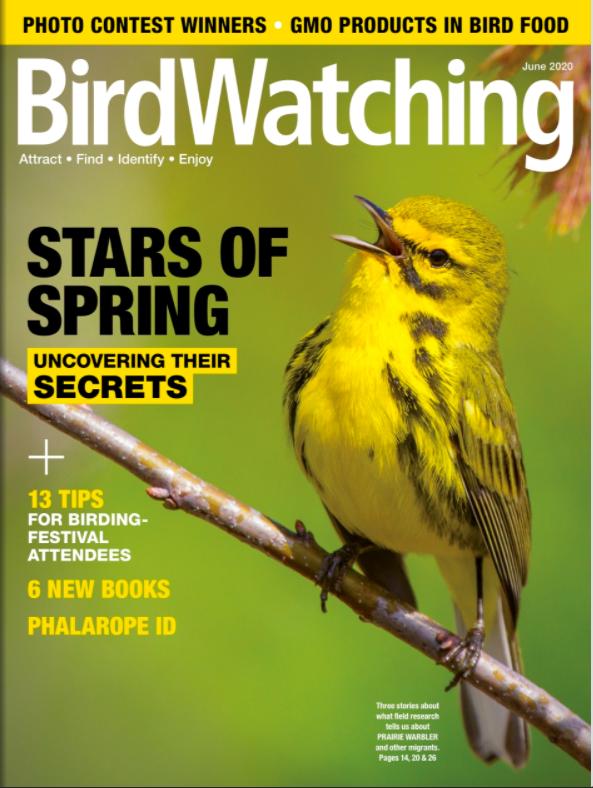 Birdwatching June Cover