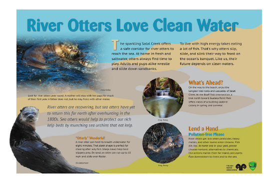 River Otters Love Clean Water